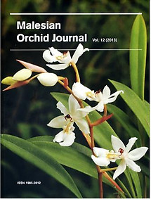 Malesian Orchid Journal Vol 12 (2013)  - Andre Schuiteman (ed)