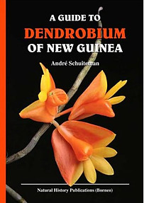 A Guide to the Dendrobium of New Guinea - Andre Schuiteman